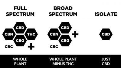 broad spectrum vs full spectrum cbd